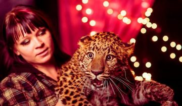 leopardalh