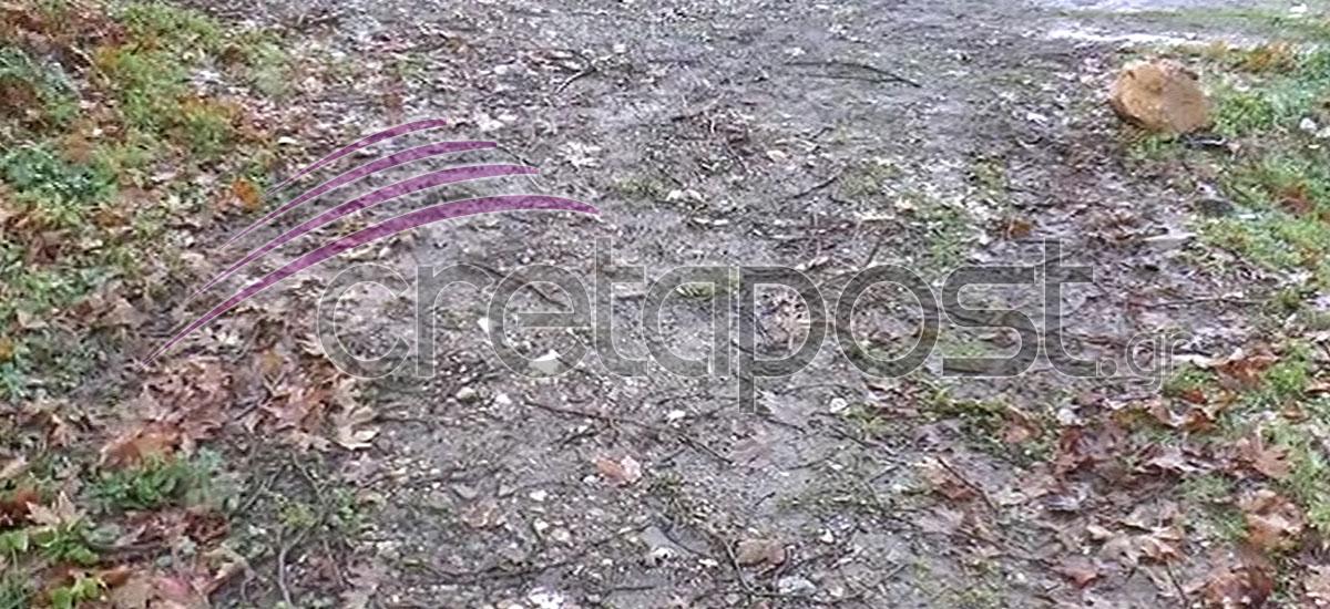 Το σημείο στη Ροδιά όπου βρέθηκε το αυτοκίνητο του 40χρονου Ιάκωβου Εμμανουήλ.