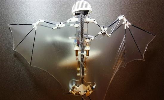 bat-robot