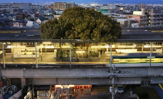 treno-dentro-iaponia