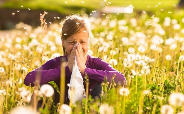 Αποτέλεσμα εικόνας για allergies