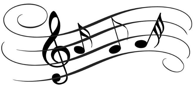 notes-synavlia
