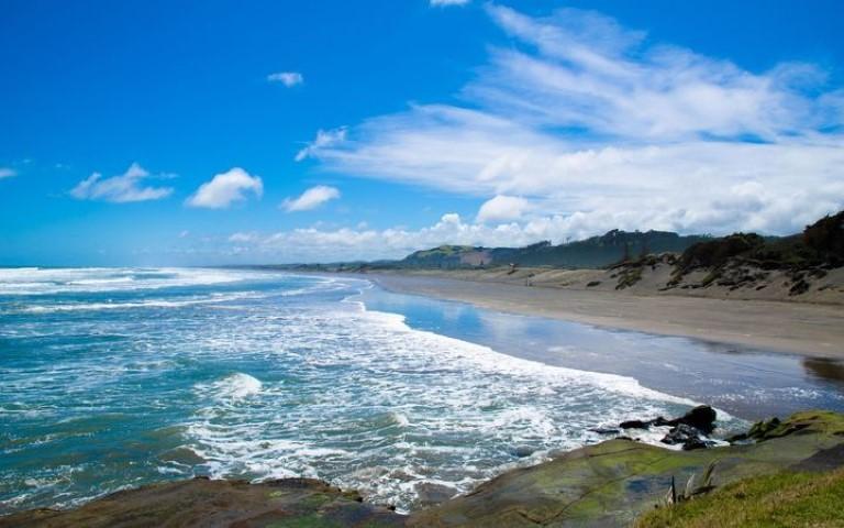 8-muriwai-beach