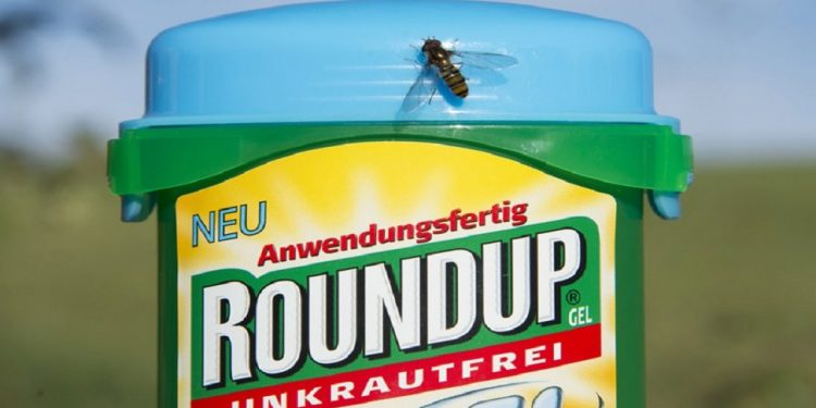 Monsanto ordered to pay 289 million US dollars in California Roundup cancer trial