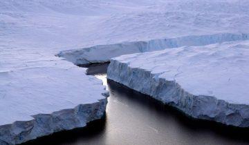 arktikh