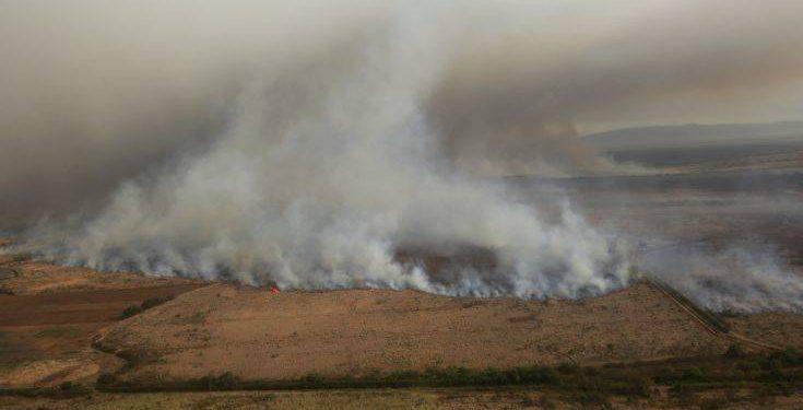 Hawaii Brush Fire