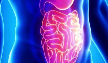 gastroenteritis1