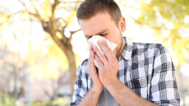 Allergic man sneezing covering nose with wipe
