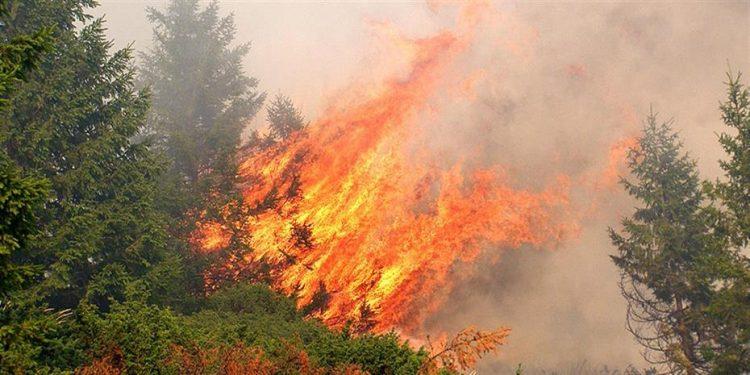 1479086-fire-930-1