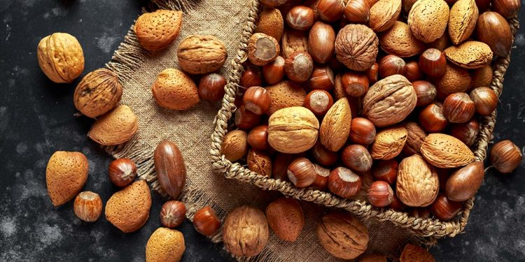Mix of different kinds of nuts in shell.