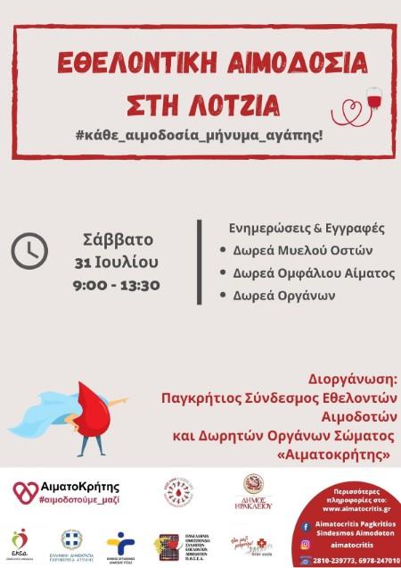 aimodosia-31-7